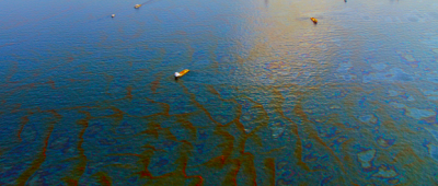 Oil Spill Image - Garrett and Associates