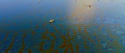 Oil Spill Image - Garrett and Associates